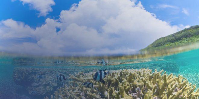 teknik fotografi bawah air